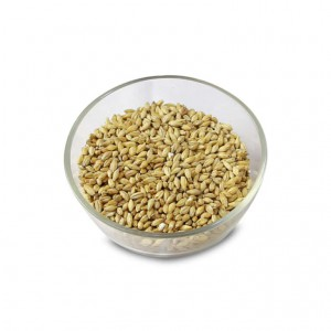 Beech Smoked Barley