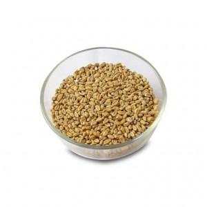 Pale Wheat